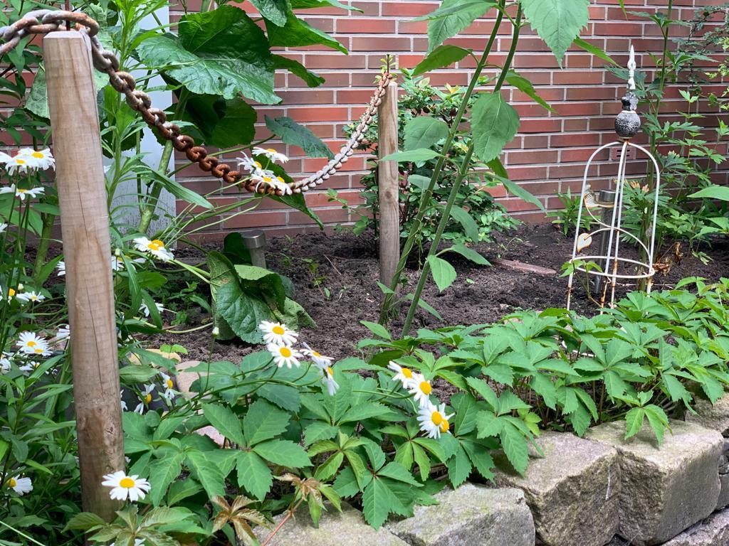 Grünes Klassenzimmer – Frühjahrsputz im Sommer