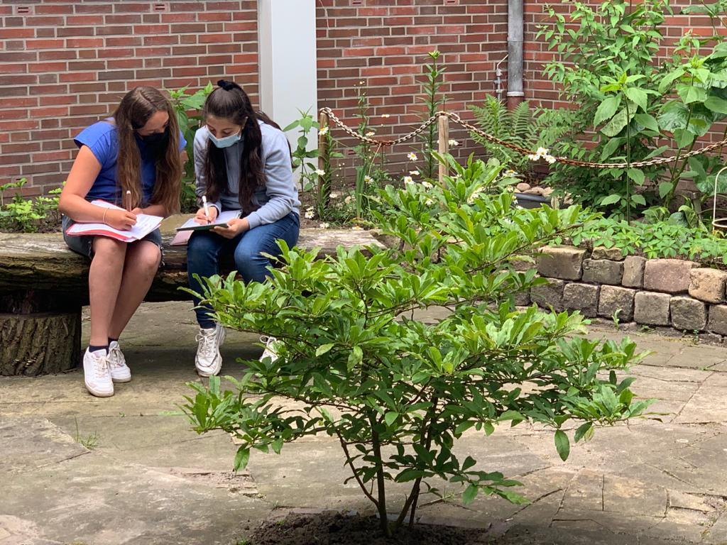Lernen im grünen Klassenzimmer